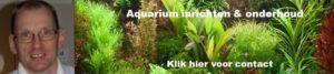 Aquarium inrichten